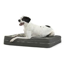 Waterproof Classic Pet Accessories Memory Foam Outdoor Dog Bed